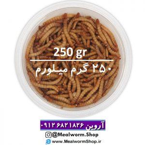 سایت میلورم شاپ mealwormshop.ir | فروش میل ورم زنده 250 گرم | فروش میل ورم زنده دویست و پنجاه گرم | میلورم خشک | میلورم زنده | میل ورم زنده | میل ورم بسته بندی | فروشگاه میل ورم